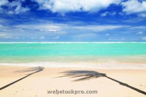 Tropical beach with palm shadow stock photo