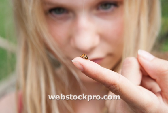 Ladybird on a girl finger Stock Photo - WWF002377